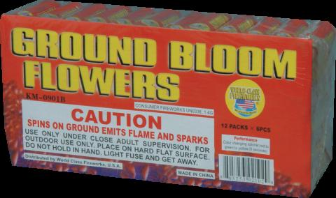 Ground-Bloom-Flowers